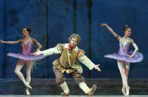 Roman Volodchenko, «Don Quixote», The Kremlin Ballet