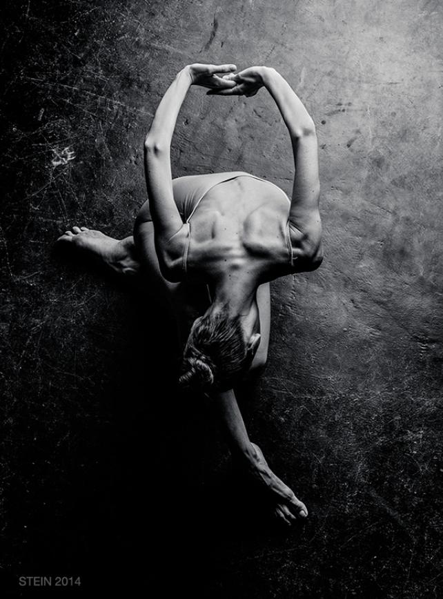 © Vadim Stein