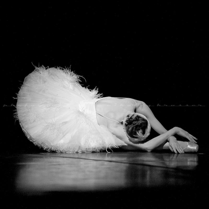 умирающий лебедь балет фото гар