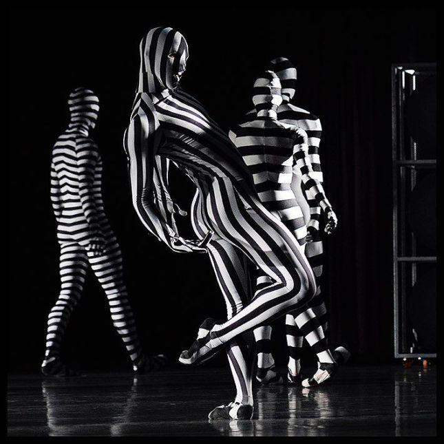 © Alain Hanel