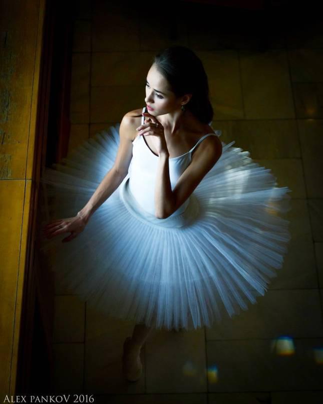© Triple View Studio (Elena Pushkina, Alex Pankov and Valery Logachev)