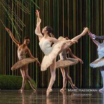 © Mark Haegeman / Het Nationale Ballet